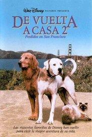Volviendo a Casa 2: Perdidos en San Francisco