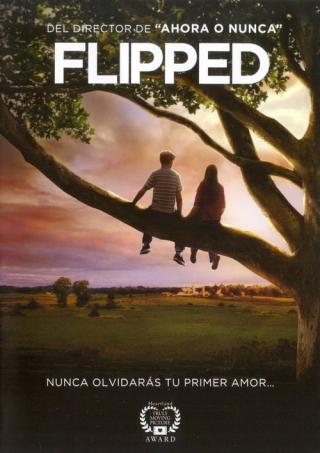 Mi primer amor (2010)